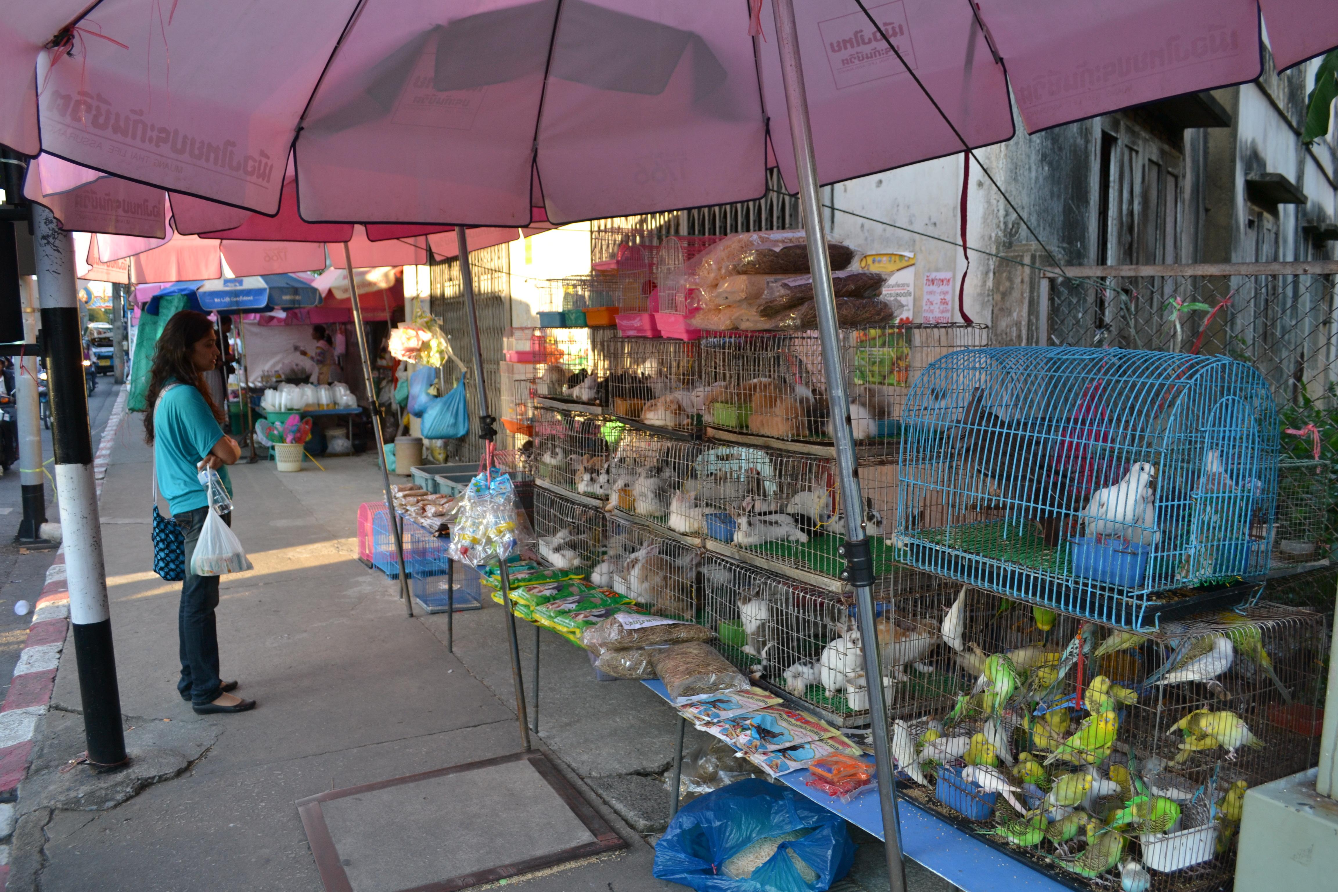 Whole Food Market Daytona Beach